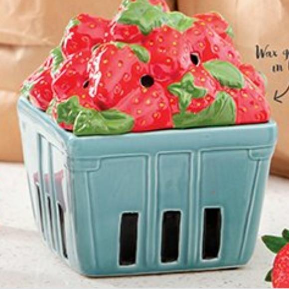 Wax warmer strawberry basket